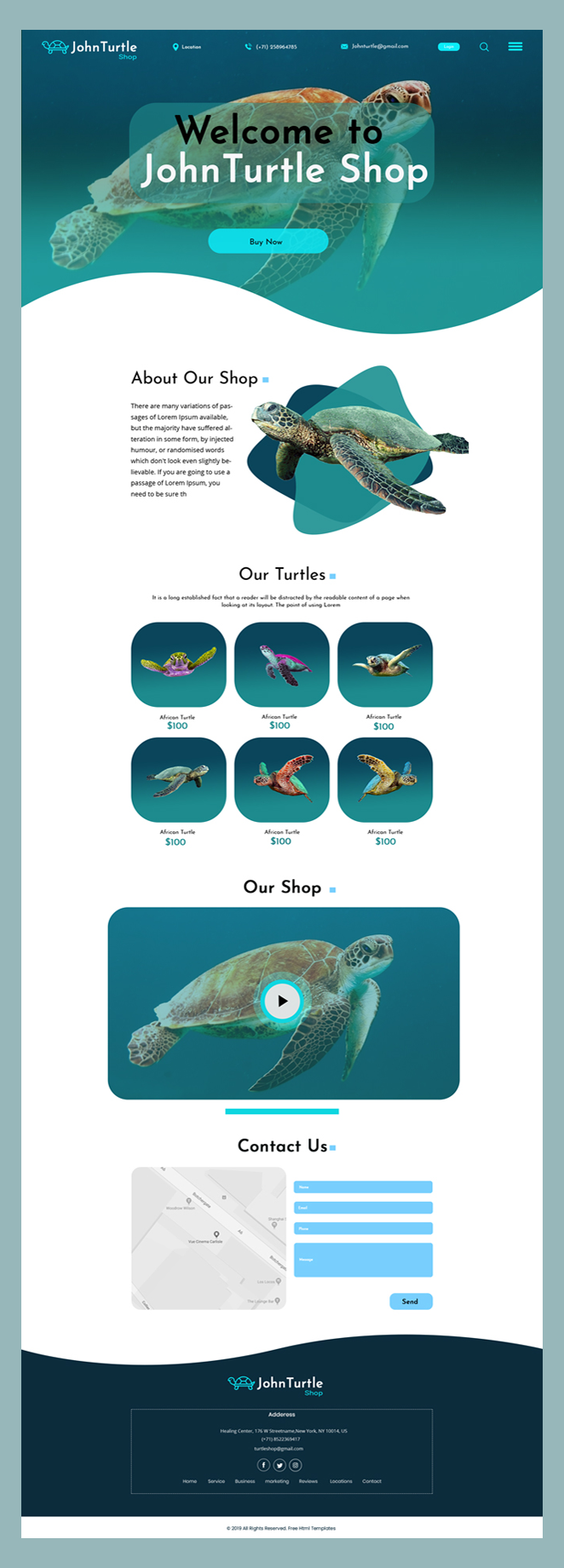 John turtle shop psd template